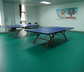 乒乓球桌厂家