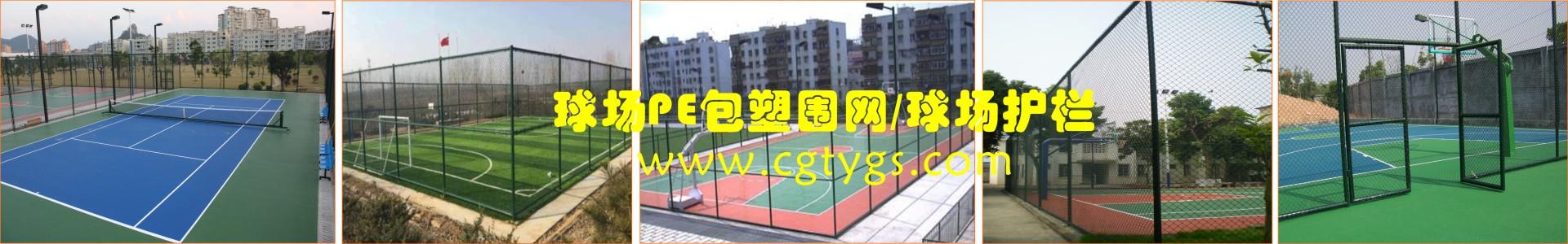 球场PE包塑围网