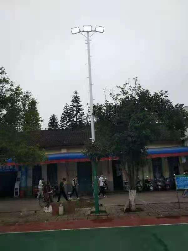 柳州市沙塘镇广西农牧工程学校订制款10米球场灯光安装